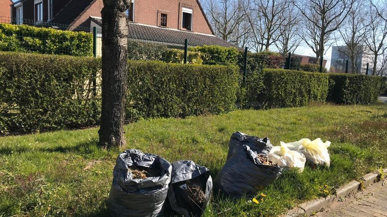 Lens: pas de ramassage des déchets végétaux