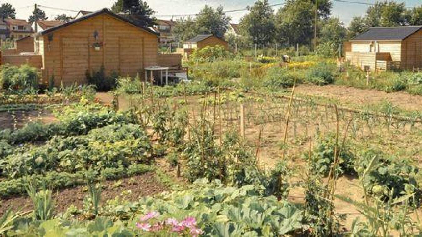 Bonne nouvelle pour les jardiniers, ils peuvent s'activer pendant le confinement.