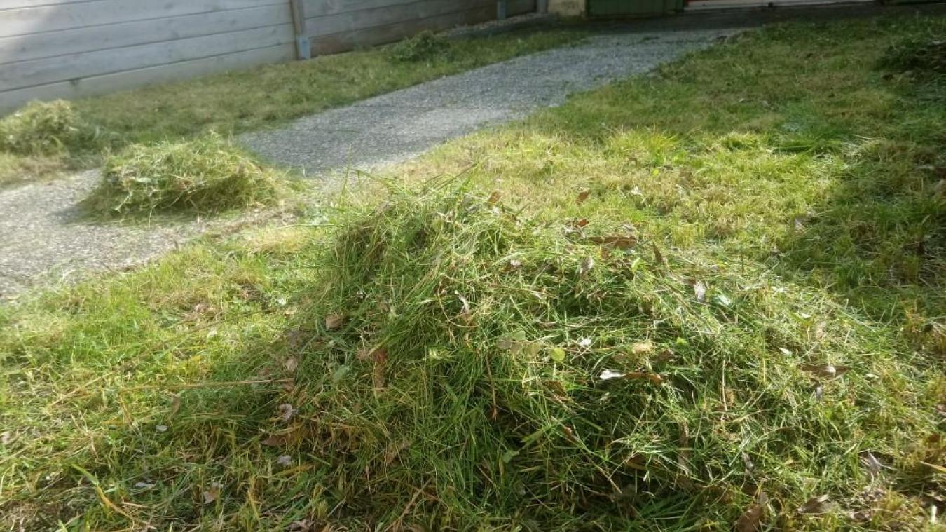 « De plus en plus de déchets se sont retrouvés dans les fossés », explique le maire de Spycker. Une benne a donc été installée, le 14 avril.  Photo d'illustration