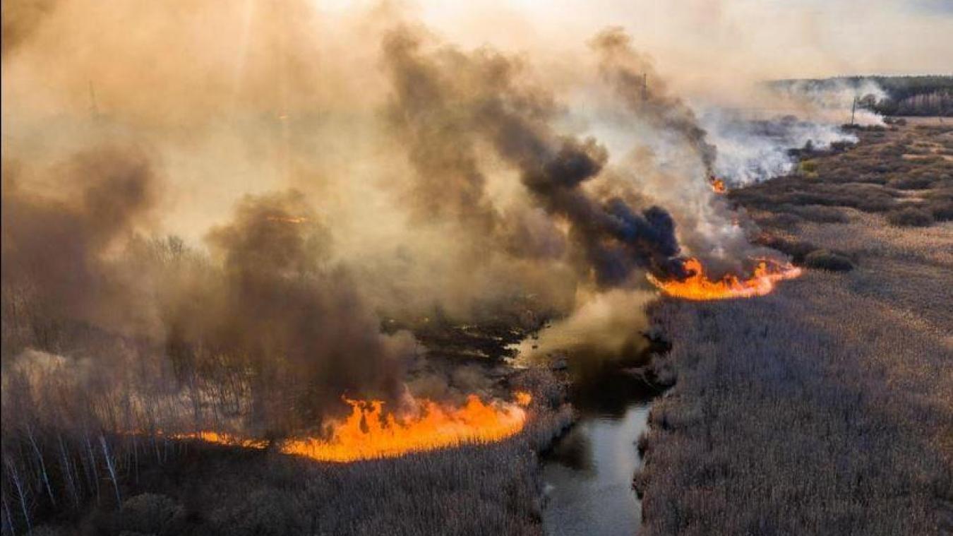 L'incendie s'est déclaré dans la zone interdite autour de la centrale de Tchernobyl.