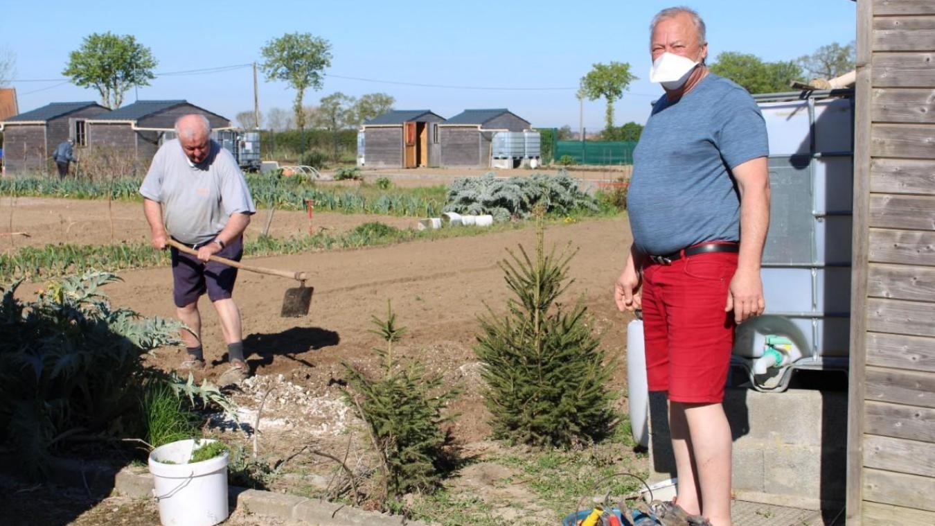 Depuis le 5 avril, les jardiniers peuvent à nouveau s'occuper de leurs potagers.