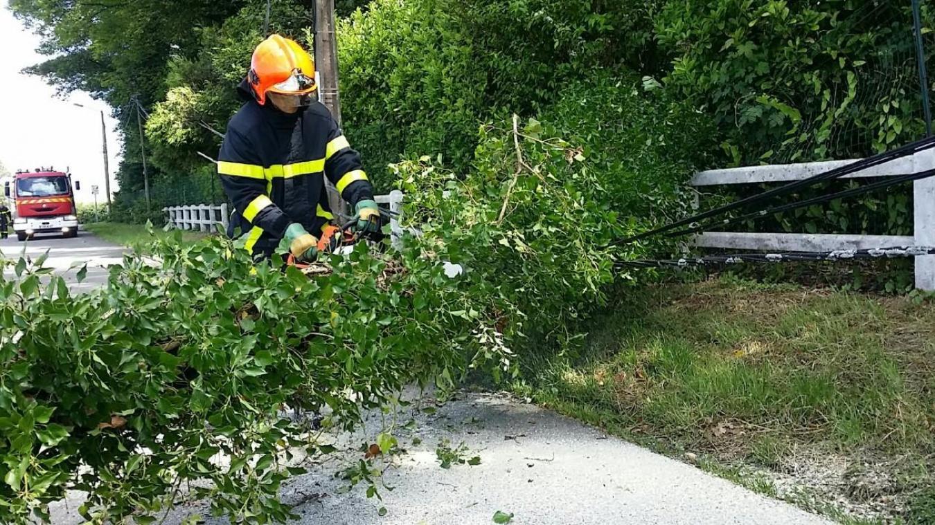 Les sapeurs-pompiers de Marquise ont dû intervenir pour procéder au tronçonnage de l'arbre qui s'est couché sur la voie publique et dégager les fils électriques qui l'ont accompagné dans sa chute.