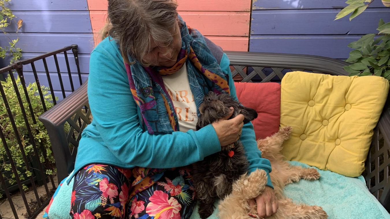 Sigried Cuvelard, 56 ans, est une véritable amoureuse des animaux. Passionnée, elle a occupé de nombreux fonctions au sein de la Société protectrice des animaux dunkerquoise.