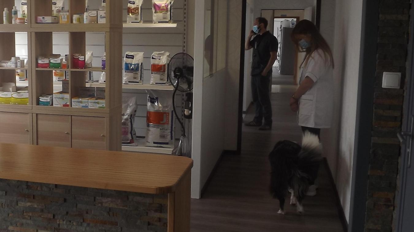 Dans sa nouvelle clinique vétérinaire, Mickael Bouquelet dispose de 150m².