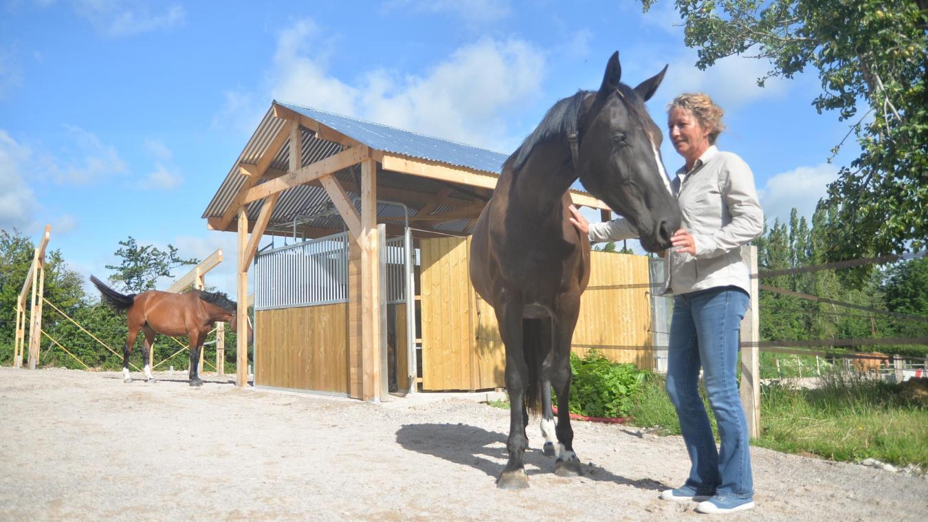 Les chevaux vivent en groupe et en toute liberté, de quoi renforcer leur bien-être.