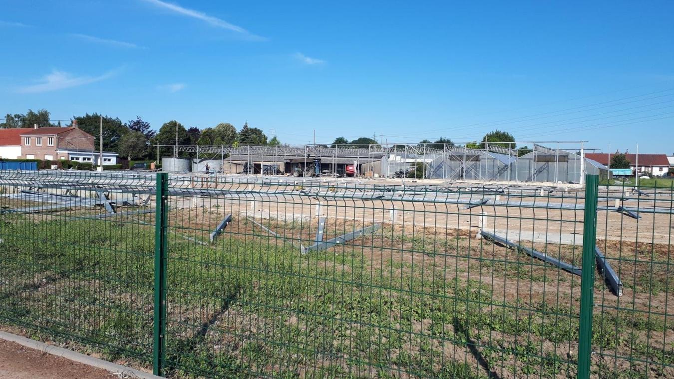 Morbecque  : des logements à la place des serres Vandaele