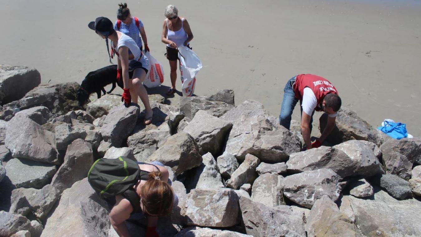 Les bénévoles se réunissent dès 9 h 30, ce dimanche, sur la plage de Sainte-Cécile.