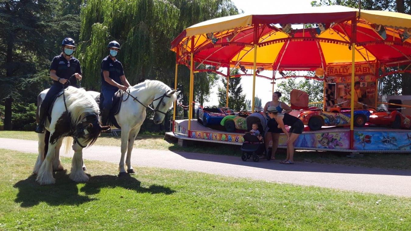 Ils sont sept chevaux à intervenir, à tour de rôle, au parc. Ici, il s'agit de Blatos (à gauche) qui adore les carresses, et Quador.