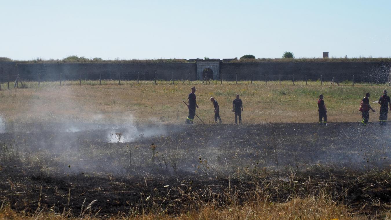 Un feu de broussaille au Fort Nieulay à Calais (vidéo)