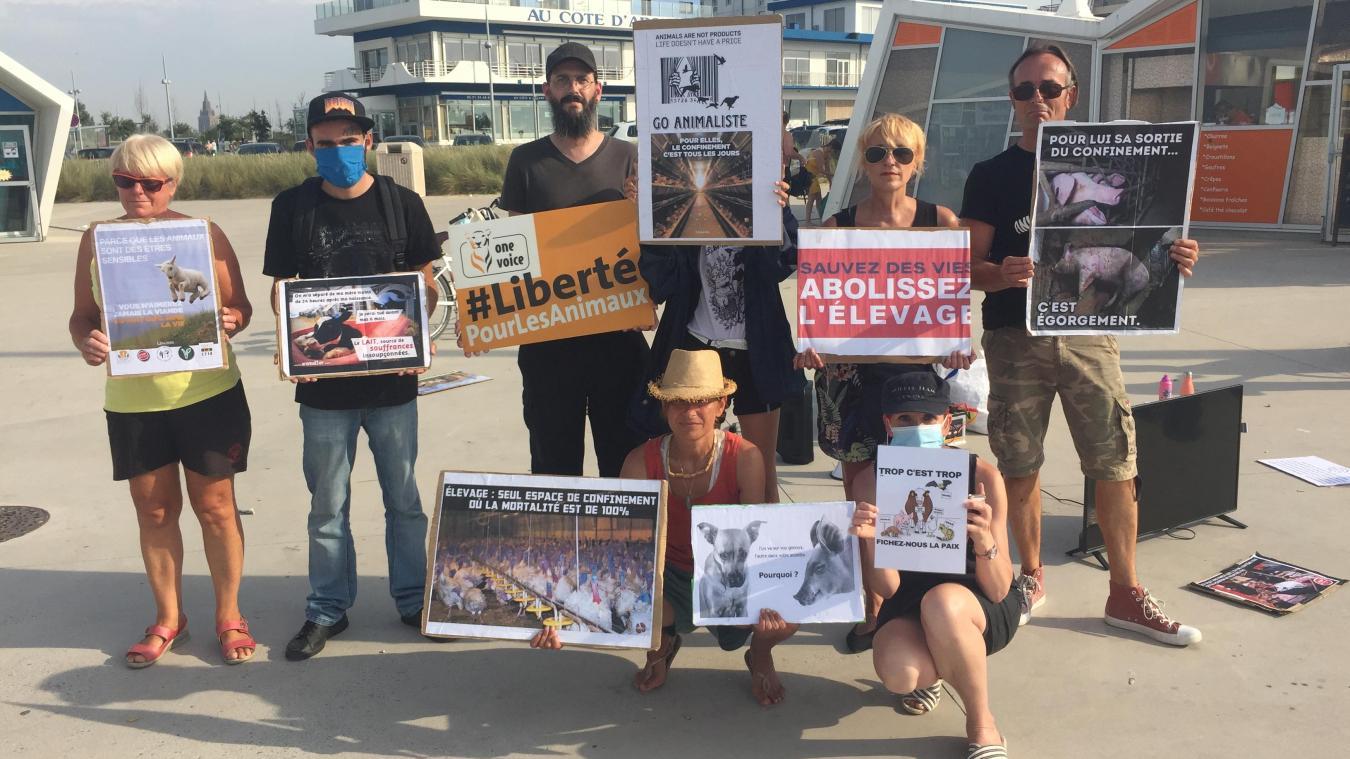 Les membres du collectif étaient à Calais hier après-midi pour parler de la cause animale.