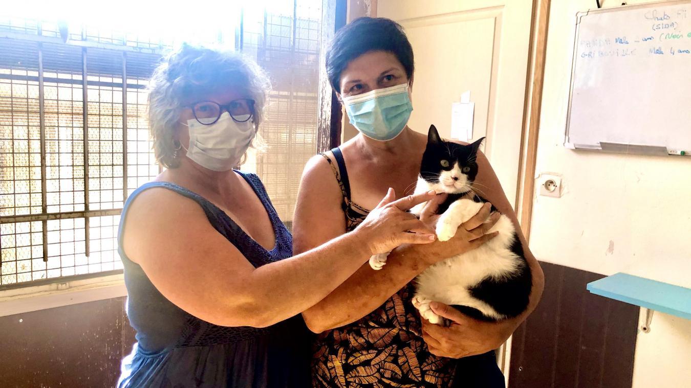 Sylvie Delcroix et Claudine Blot sont venues renforcer les équipes du refuge. Elles souhaitent faire adopter Panda.