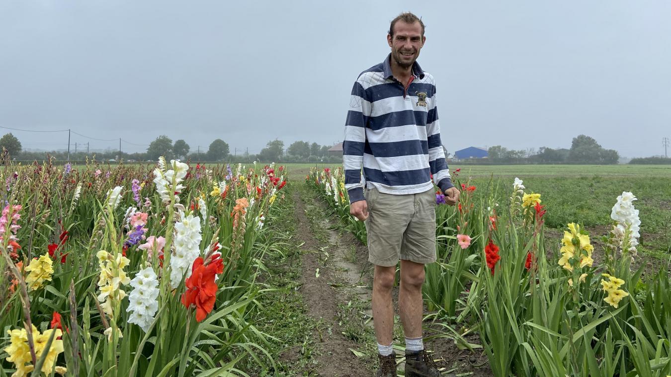 Baudouin Bonduelle passe une à deux fois par semaine dans ses différents champs de fleurs afin d'entretenir les allées et les plantes fanées.