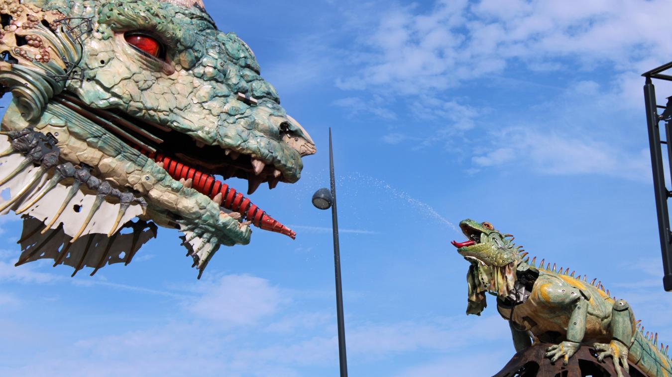 Premier moment d'interaction entre le Dragon de Calais et l'Iguane Sentinelle.