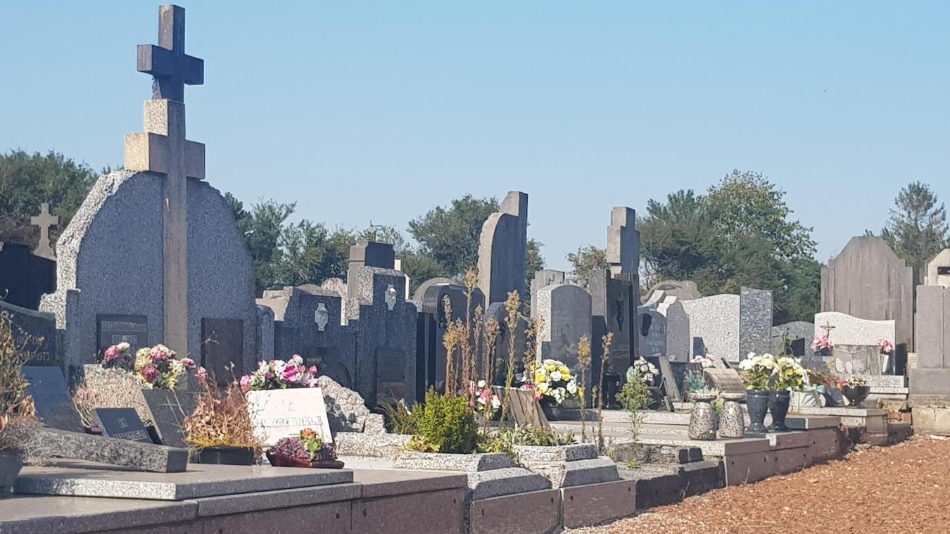 Annezin : un appel pour nettoyer les tombes