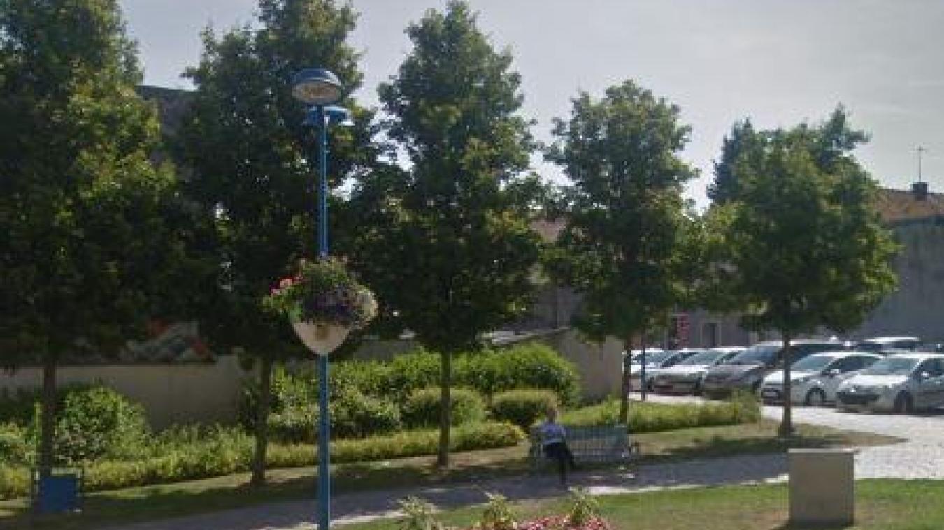 De nouveaux arbres devront être plantés à plusieurs endroits de la ville.