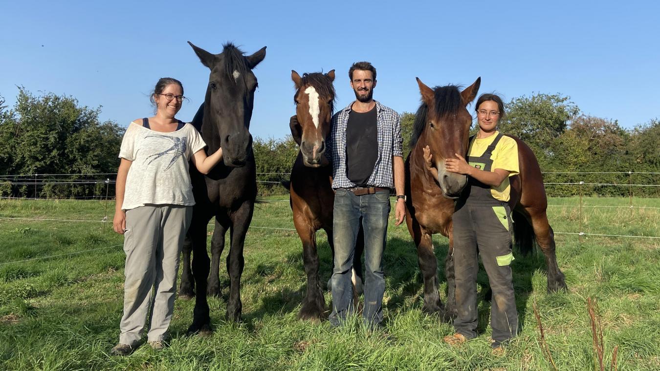 Clémence, Benoît et Marie partagent leurs connaissances en maraîchage biologique et en traction animale.