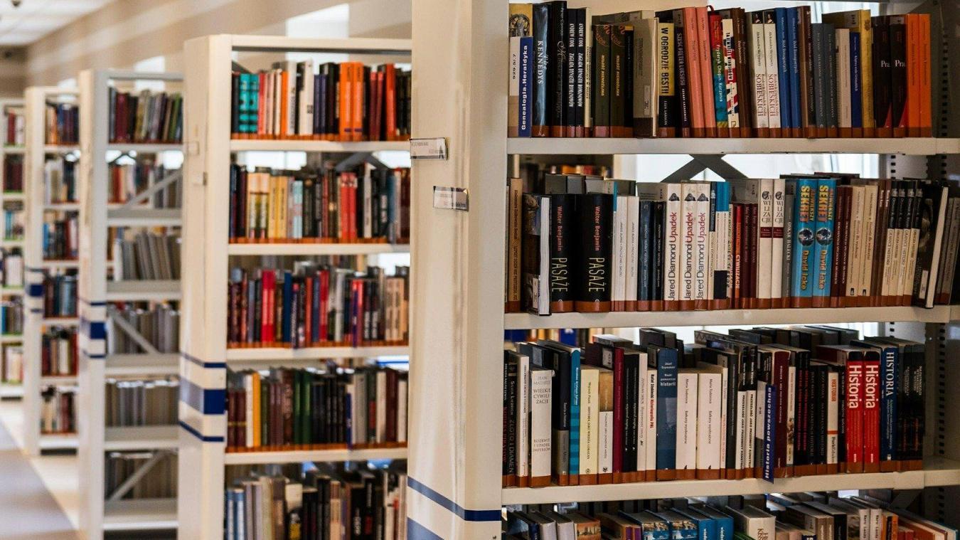 Grâce à ce réseau, les habitants auront accès à tous les livres, CD, DVD et jeux de société présents dans les médiathèques du territoire.(Photo d'illustration/© Pixabay)