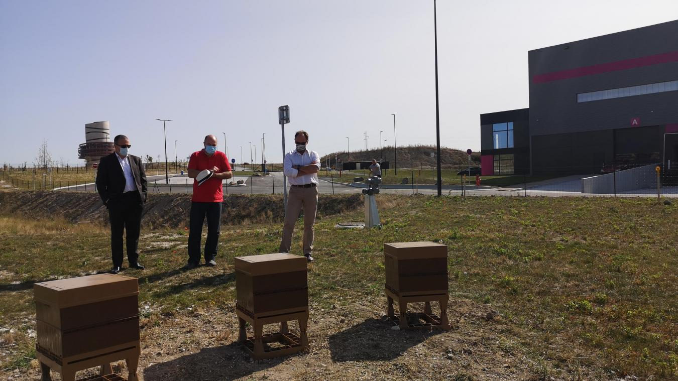 Trois ruches sont arrivées dans le V.Park de Virtuo.