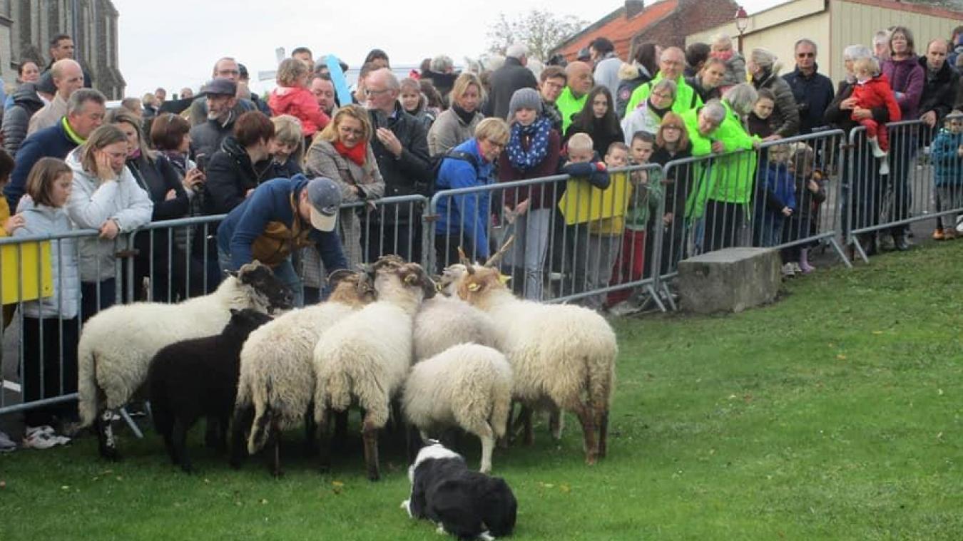 Il aurait été impossible, pour la Municipalité, d'éviter les rassemblements pour la Saint-Hubert qui devait se tenir le 25 octobre. Comme l'an dernier, lors de la démonstration de dressage de moutons du spécialiste local.