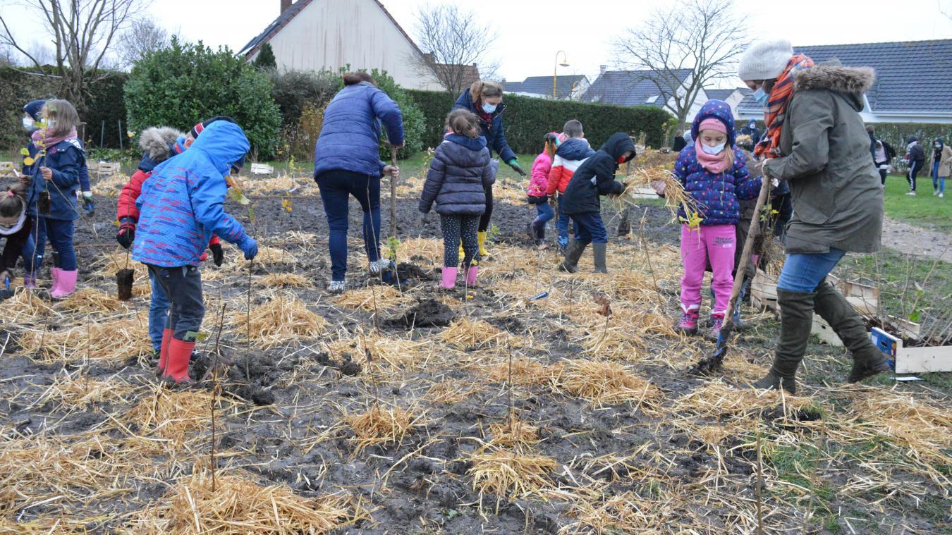 Des écoliers et des collégiens ont participé à une opération de plantation et de paillage rue Bizet afin de créer une forêt urbaine.