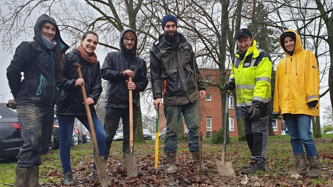 La communauté urbaine d'Arras va planter 4 000 arbres