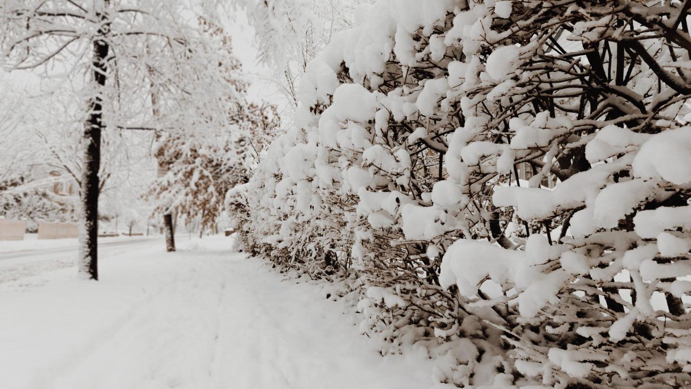 On n'aura pas eu un Noël blanc de neige, mais peut-être que ce sera pour le réveillon, selon MétéoFrance.