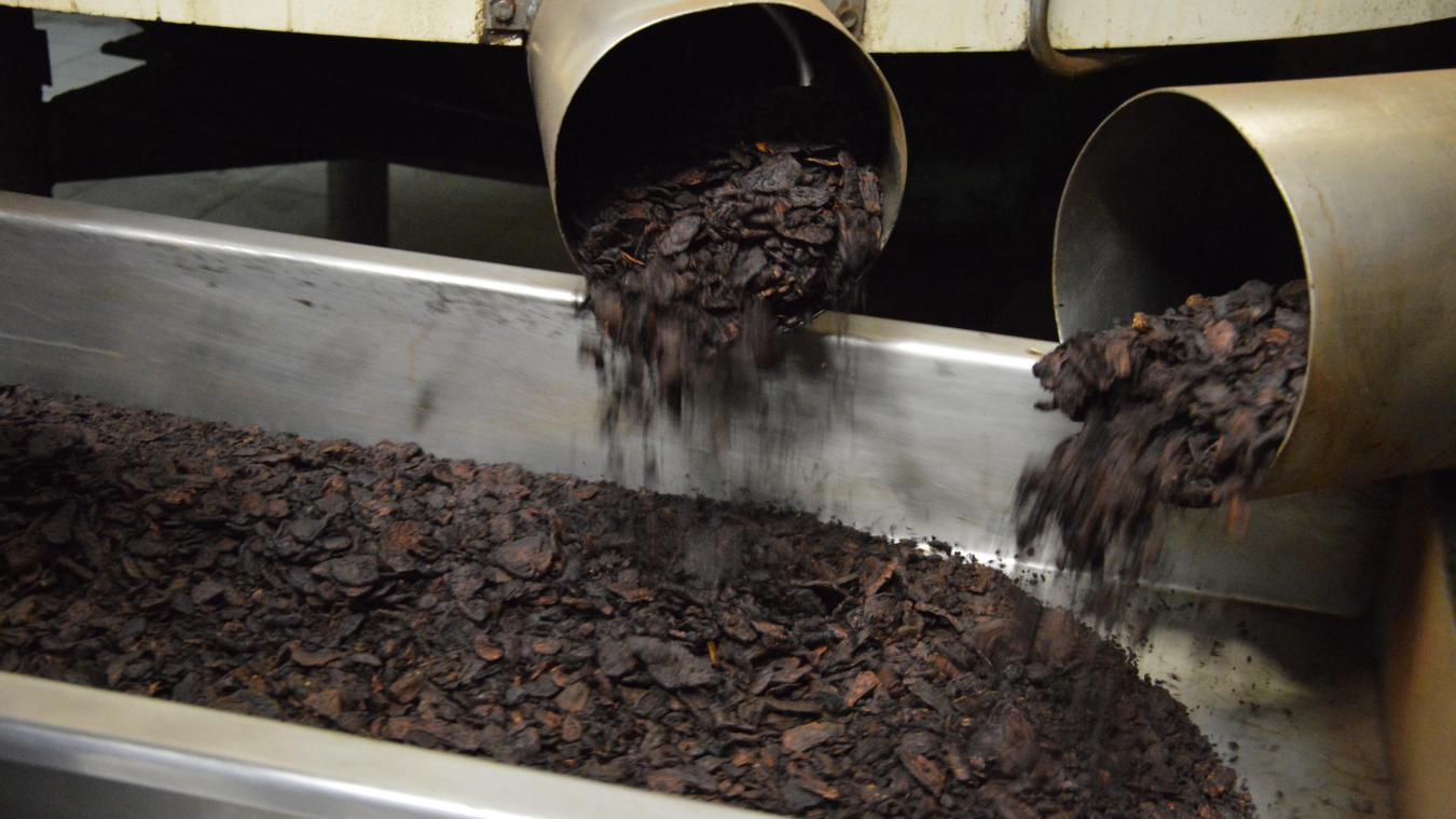 Les nouveaux produits sont cultivés, séchés et torréfiés entièrement dans la Région, comme ici à Oye-Plage.