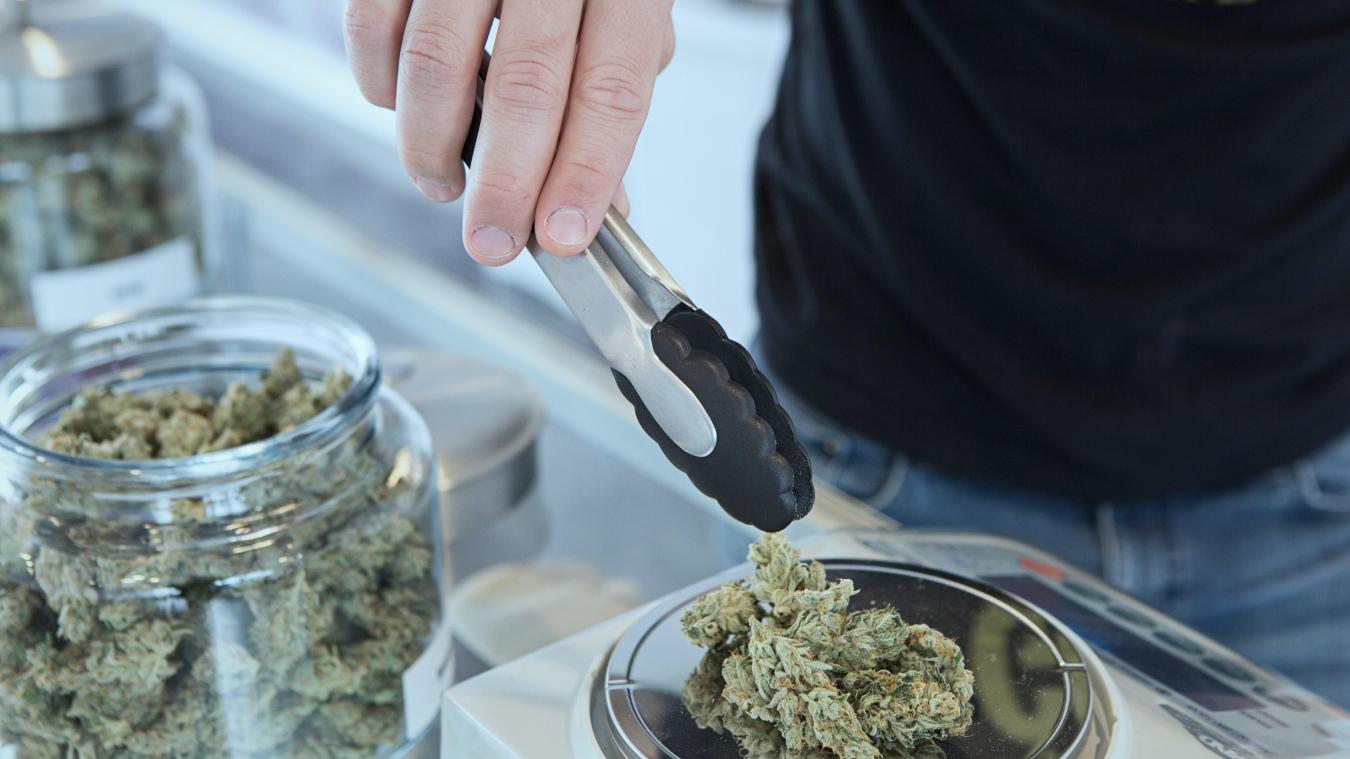 La législation en France est une des plus répressives en Europe alors que ses habitants sont les premiers consommateurs de cannabis du continent, avec 5 millions d'usagers dans l'année et 900 000 fumeurs quotidiens