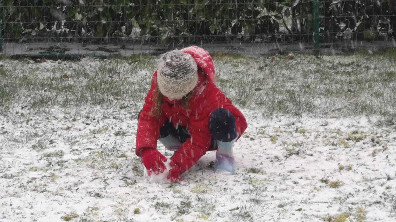 La neige tombe sur l'Artois (photos-Actualisé 14 heures)