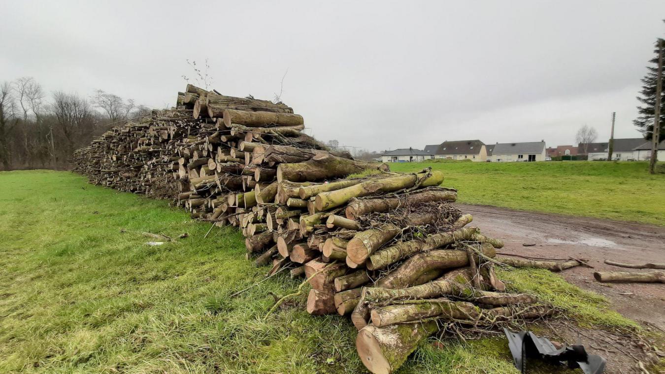 Des vols de bois ont été constaté. L'ONF assure que la structure est solide.
