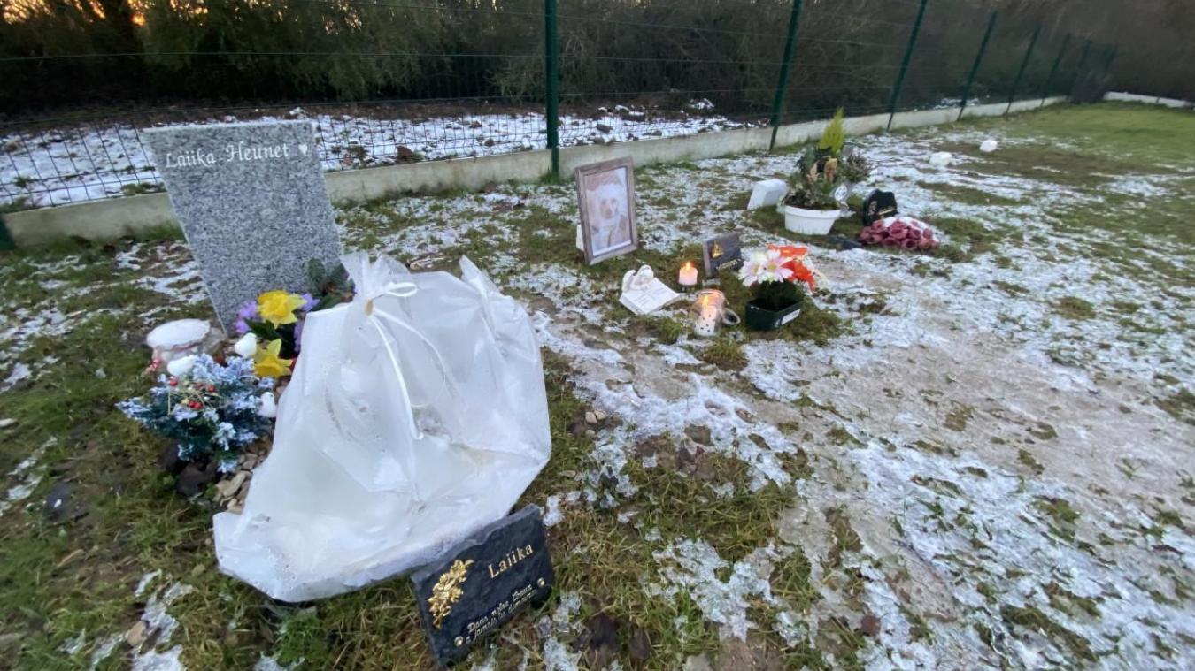 Un lapin, des chiens et des chats ont trouvé le repos dans ce cimetière.
