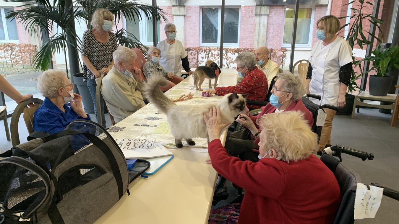 Une dizaine de résidents ont participé à l'animation et en ont profité pour câliner Crevette le chien et Riya le chat.