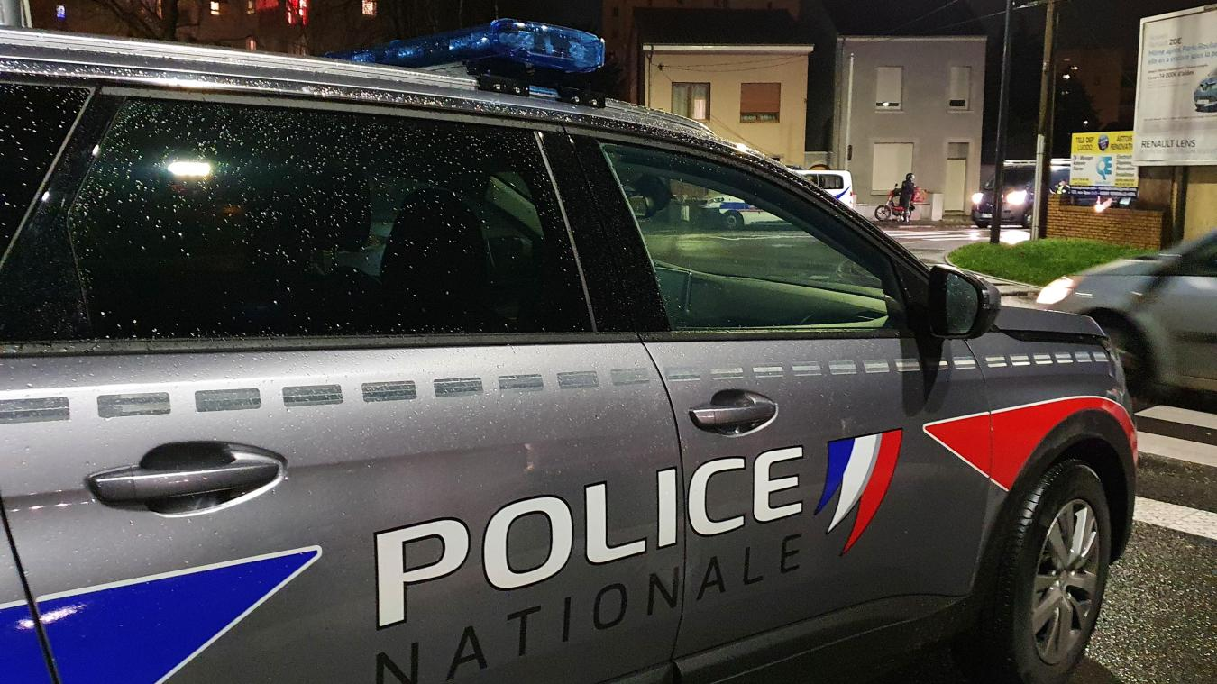 Lors de l'arrestation, la police est tombée sur des plants de cannabis.