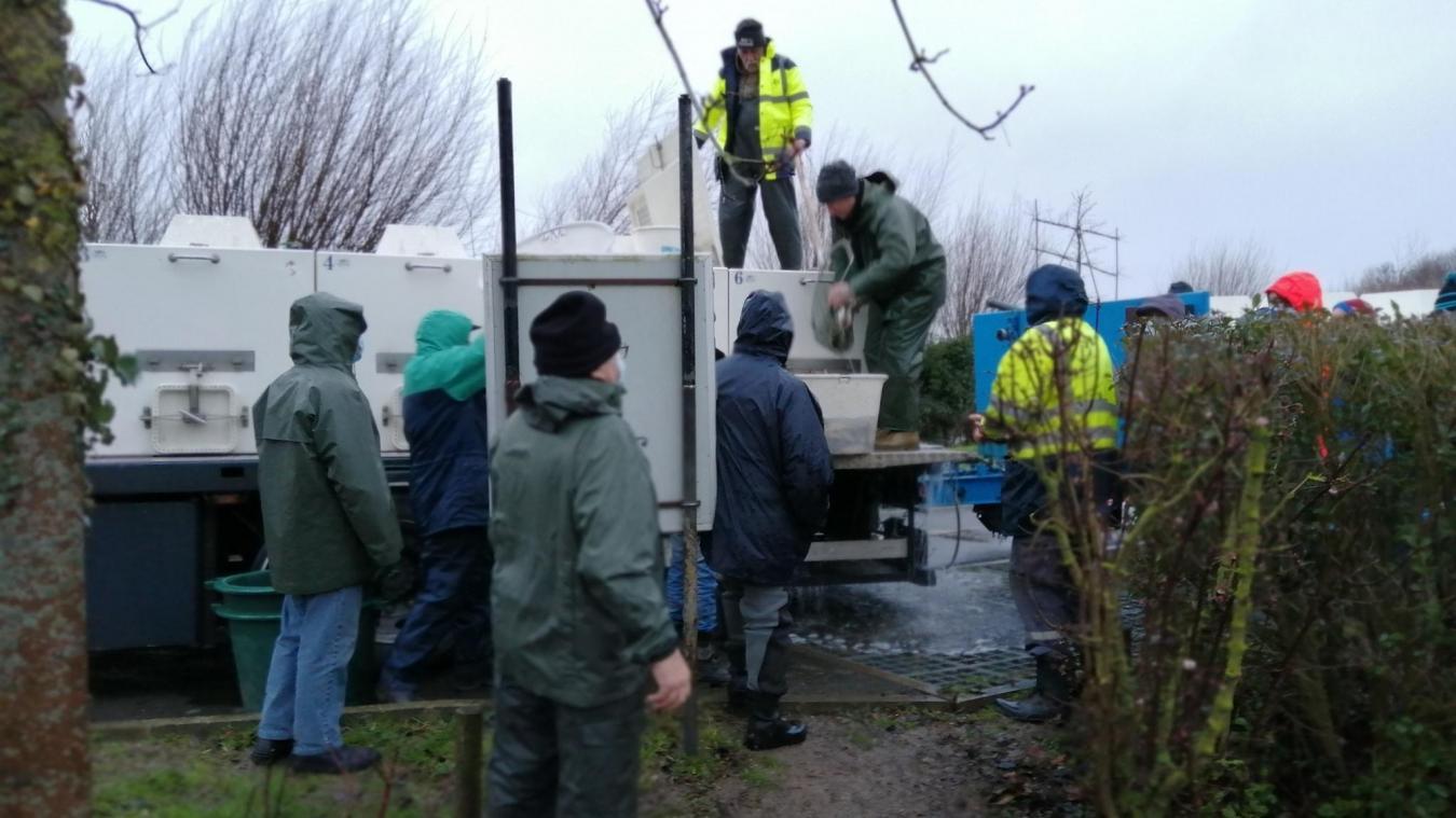 Une trentaine de pêcheurs a rempoissé l'étang des Trois-Sources à la fin janvier.