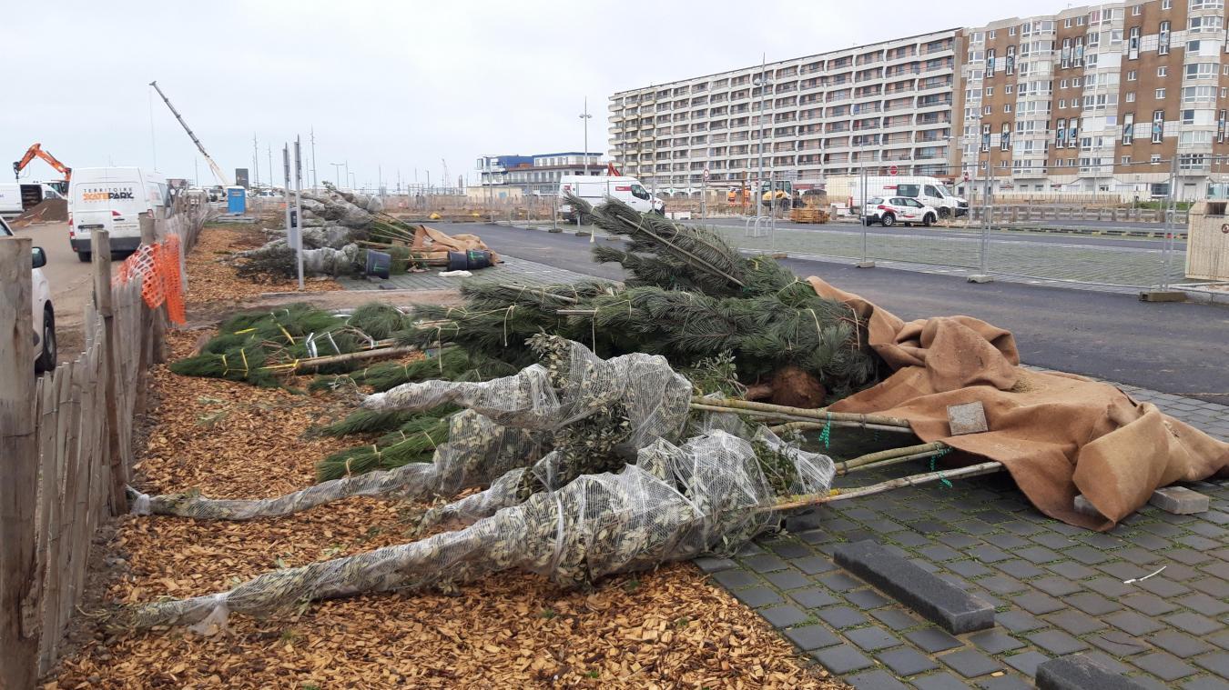 La rénovation du front de mer a été jugée «trop minérale» par l'opposition de gauche. Natacha Bouchart assure que la végétalisation est en cours...