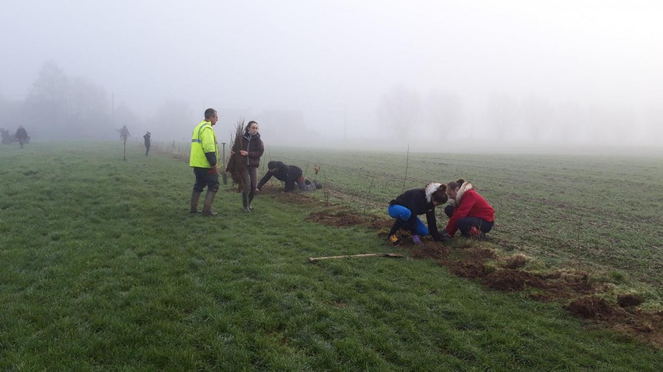 Les Jardins du Cygne, association basée à Arnèke, ont besoin de votre aide pour les différentes plantations en Flandre.