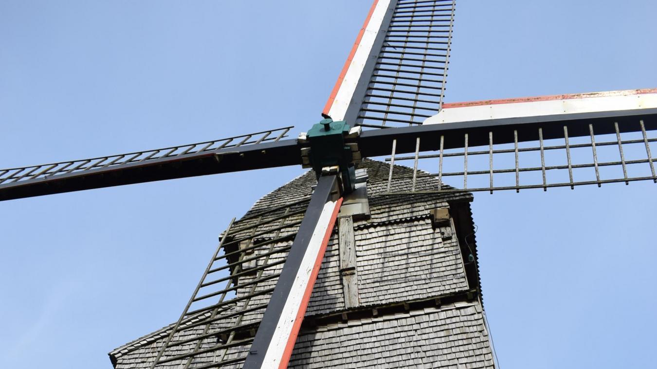 Pour Thierry Wilst, rénover le Noordmeulen est une priorité. Un édifice important, que le public peut découvrir virtuellement sur le site internet de la commune.