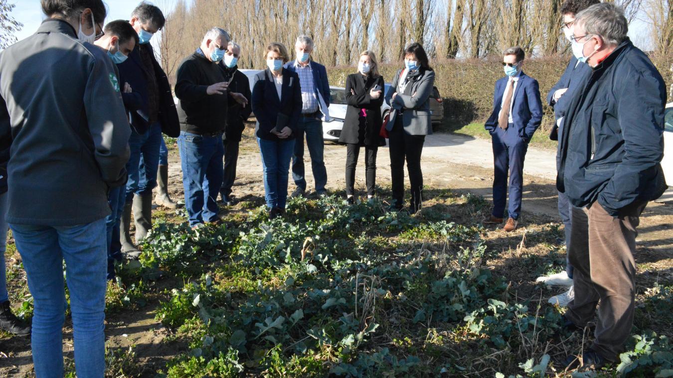 Après une première partie théorique, élus et représentants d'organismes se sont rendus sur les terrains de l'agriculteur guînois Marc Lefebvre, l'un des premiers à s'être converti à l'agroécologie.