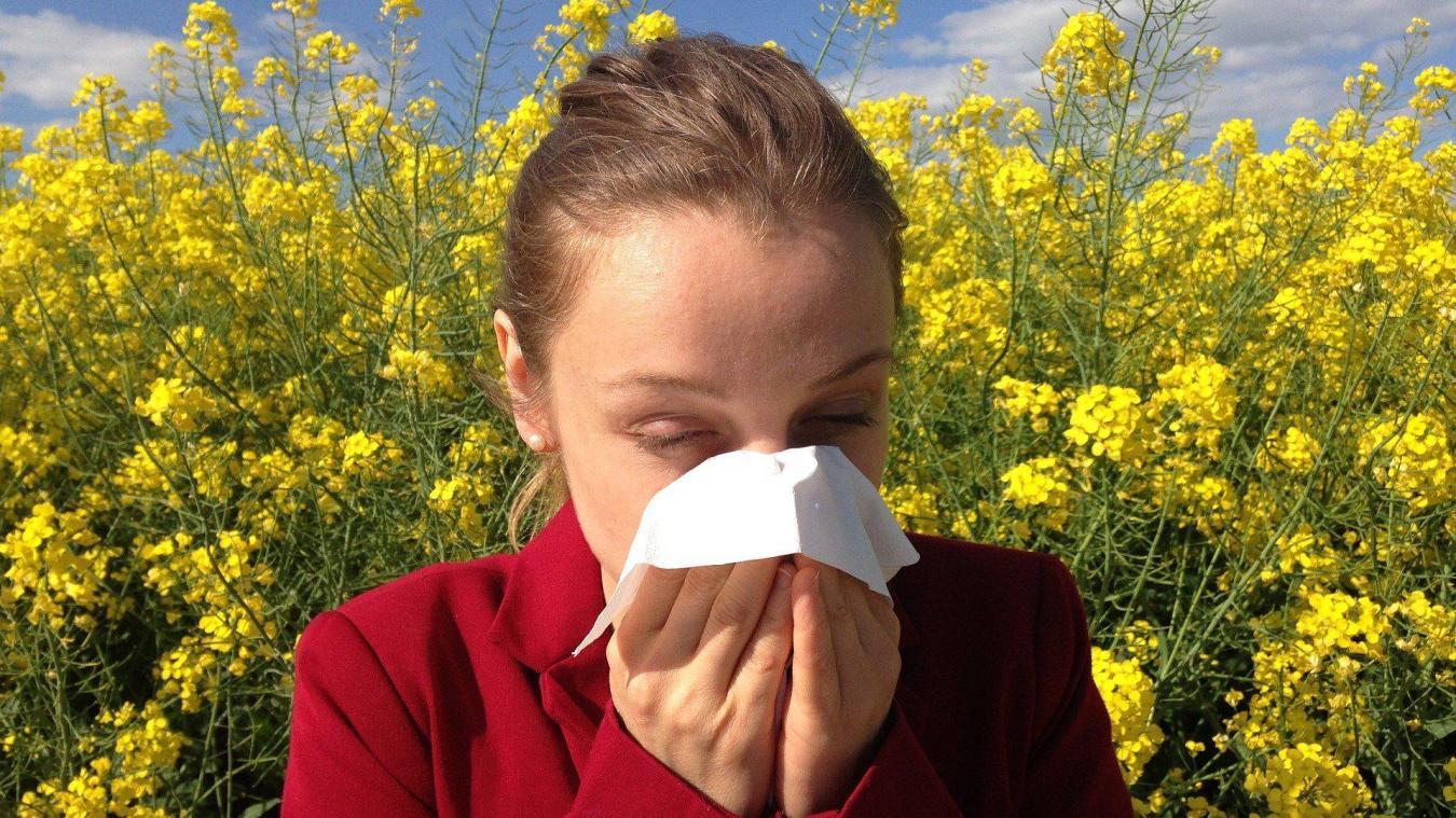 Les concentrations dans l'air de pollen d'aulne, de cyprès et de noisetier sont en augmentation.