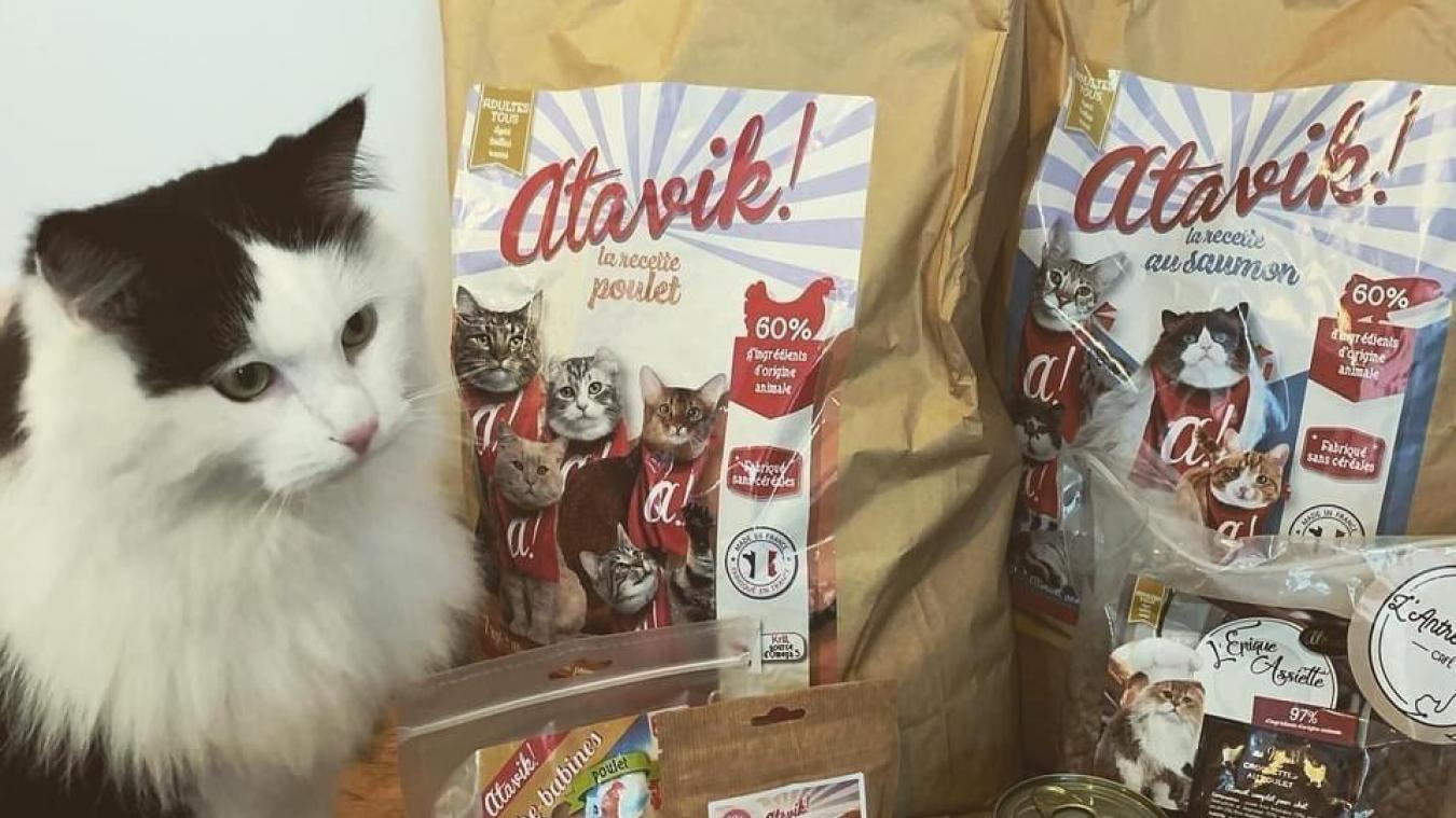 Des croquettes et de la pâté pour chats sans céréales sont en vente.