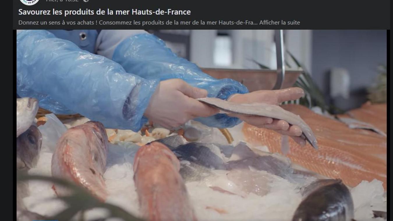 Boulogne: un clip pour relancer la consommation de produits de la mer, touchée par le confinement
