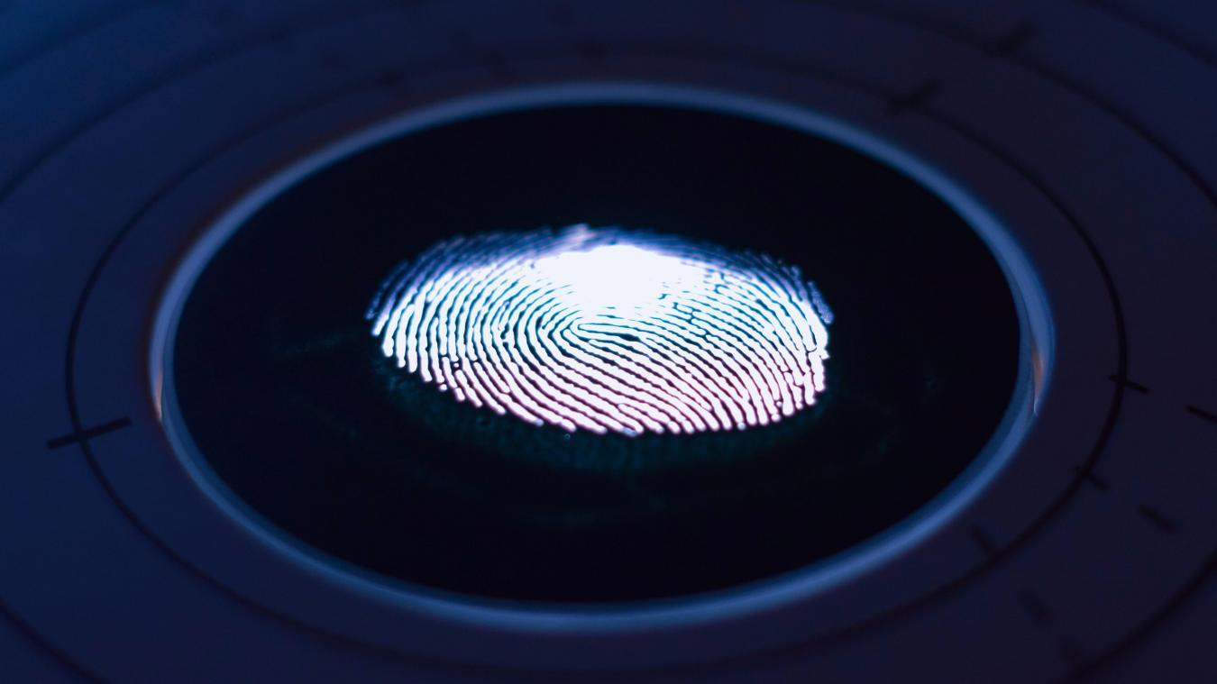 Un composant électronique sera directement intégré à la carte d'identité et comportera des éléments biométriques, dont une photo d'identité numérisée de son titulaire et deux empreintes digitales.