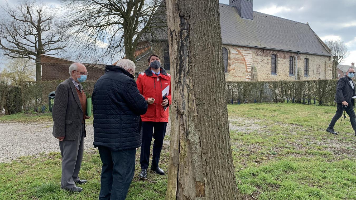 Maire, sénateur et sous-préfet étaient affairés autour du fameux chêne que le maire a identifié pour servir pour la charpente de Notre-Dame de Paris.