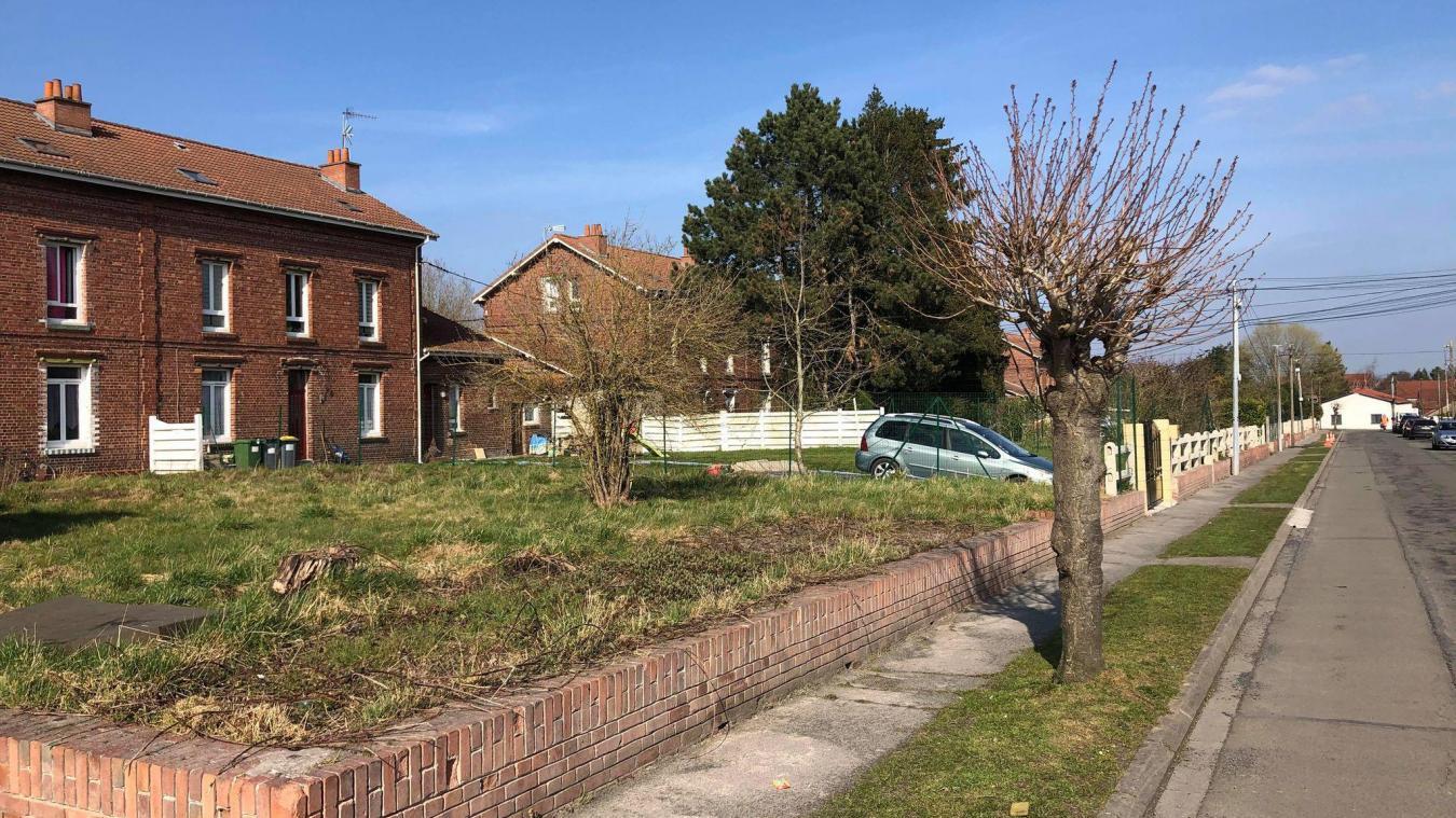 26 logements dans la rue de Belfort, au cœur de la cité 5 auchelloise, seraient menacés de destruction selon le maire.