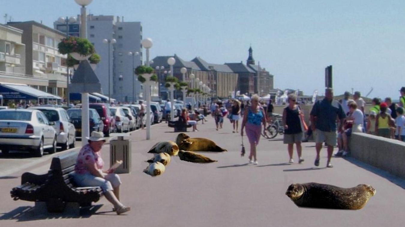 Berck : l'esplanade Parmentier reçoit d'étranges visiteurs