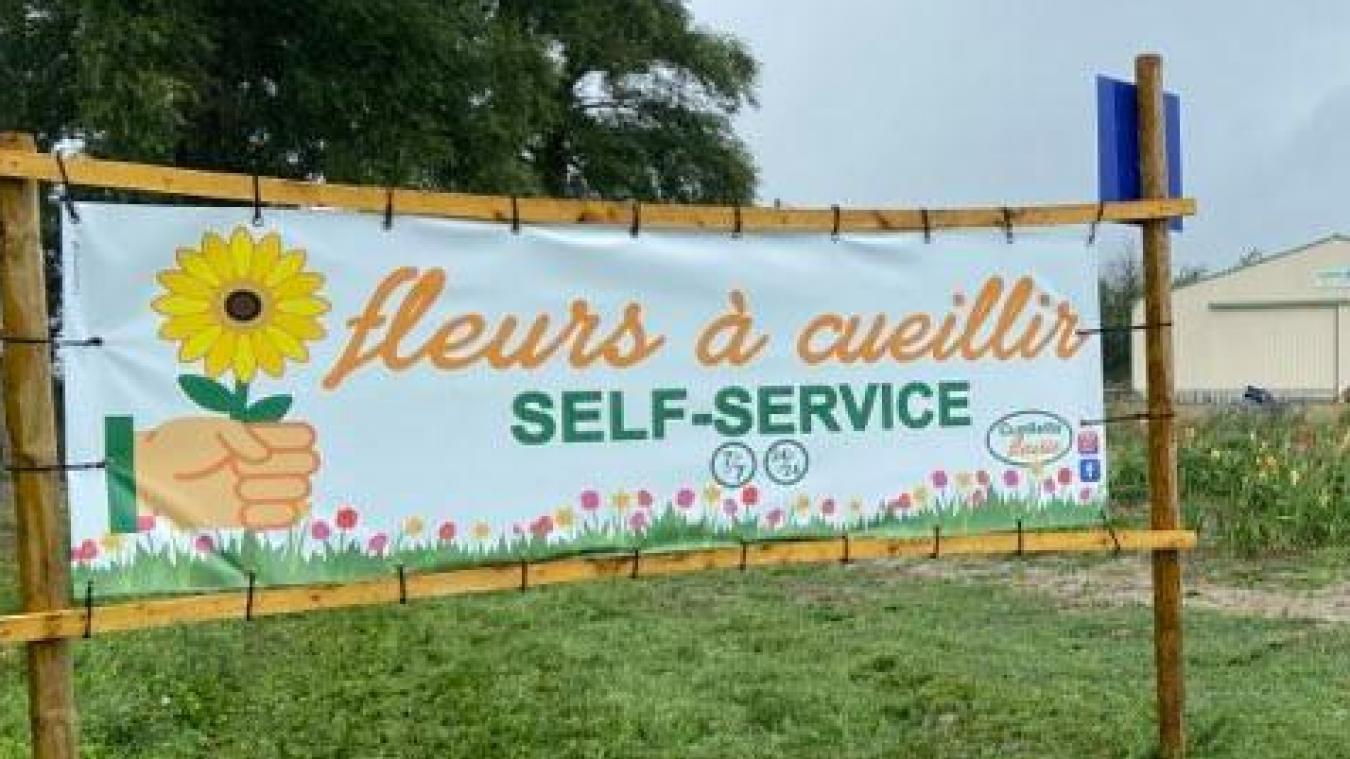 La Cueillette fleurie a de nombreux points de vente dans les Flandres.