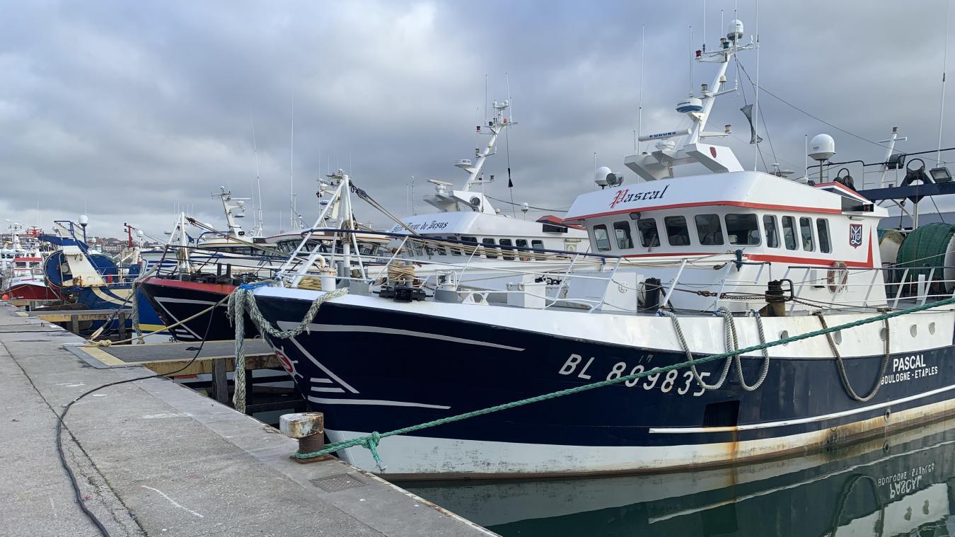 Cinq flottilles auraient déjà été vendues du fait que leurs propriétaires n'ont pas reçu leur licence.