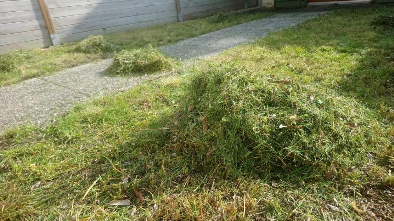 La Cud propose à ses habitants un ramassage de leurs déchets du jardin directement à leur domicile.