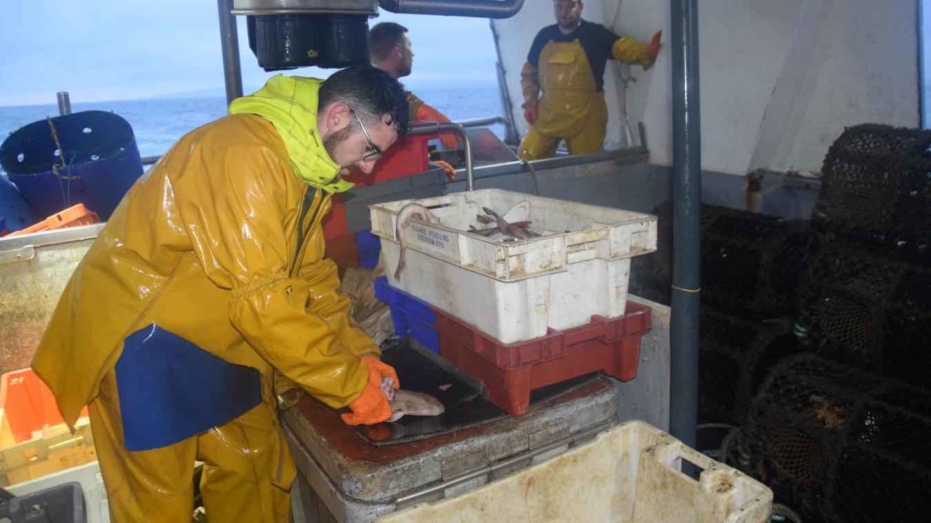 Le Mirlou IV, comme les autres pêcheurs calaisiens, ne se hasarde plus dans les eaux anglaises depuis le début de l'année.