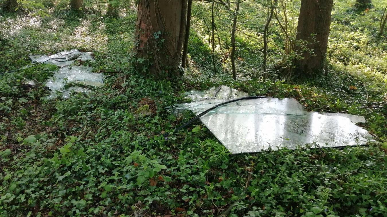 Le bois de la Noulette n'est pas épargné par les dépôts sauvages ces dernières années.